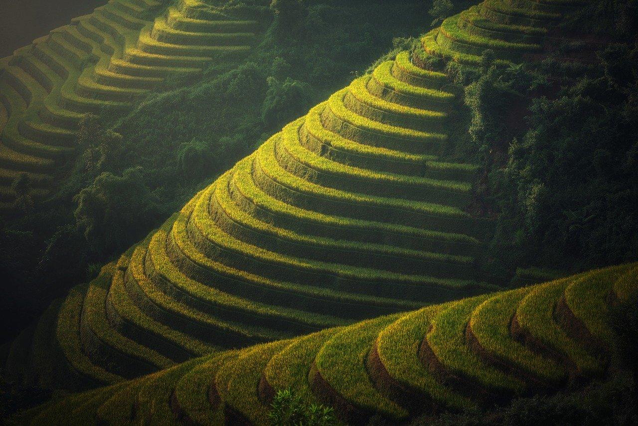 De perfecte rondreis Vietnam boek je zo!
